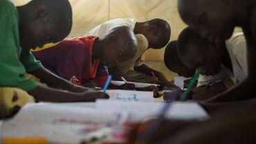 Un million d'enfants sont privés d'école à cause de Boko Haram