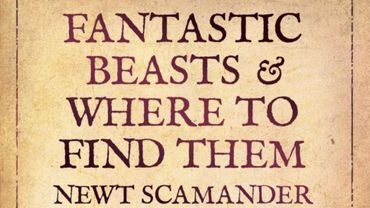 """""""Les Animaux Fantastiques"""" suit les aventures de Norbert Dragonneau, ancien élève à Poudlard qui a travaillé pour le ministère de la Magie dans les années 20"""