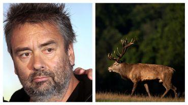France: Luc Besson accusé de trop protéger... des cerfs