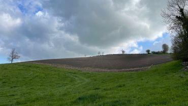 Le Domaine des Treize, un nouveau projet viticole à Hombourg