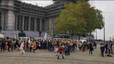 Action de soutien aux activistes anti-glyphosate jugés à Bruxelles, le 9 novembre