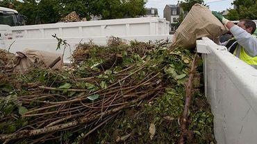En juillet, les recyparcs du Brabant wallon ont absorbé beaucoup moins de déchets verts que les années précédentes: 25% de moins qu'en 2017 et 50% de moins qu'en 2016 (illustration).