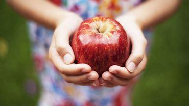 Les 5 aliments-santé de la rentrée