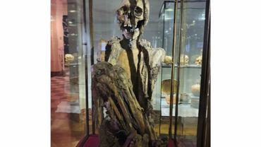 La momie exposée aux Musées royaux d'Art et d'Histoire de Bruxelles