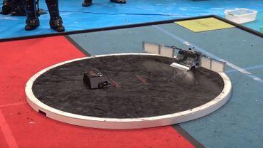 Quand les robots s'affrontent dans des combats de sumo