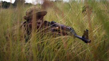 RDC: 21 écogardes tués en 2020 dans le parc national des Virunga, sanctuaire de gorilles