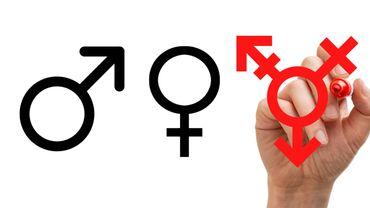 En 2020, 414 personnes ont changé d'identité de genre en Belgique