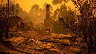 Incendies en Australie: 14 morts, des villes coupées du monde