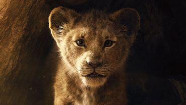 """""""Le Roi Lion"""" est de retour !"""