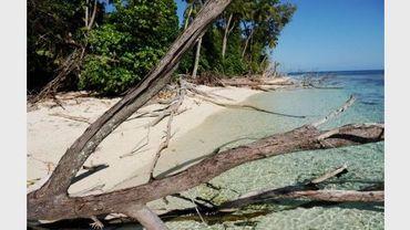 Une plage des Seychelles