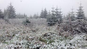 La neige est là !