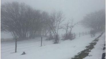 """Tirreno-Adriatico: La 5e étape """"reine"""" annulée dimanche en raison de la neige"""