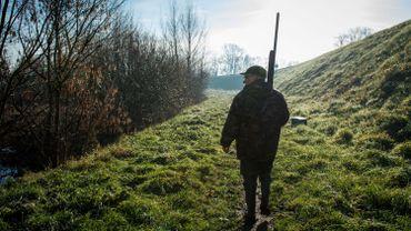 La Wallonie prolonge exceptionnellement la chasse aux cerfs, daims, mouflons et sangliers