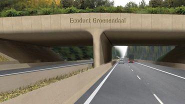 Cet écoduc a coûté plus de six millions d'euros, en partie financés par des fonds européens.