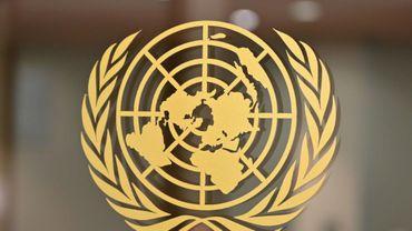 """Selon l'ONU, les laboratoires de drogue visés par des frappes américaines """"n'étaient pas contrôlés et gérés exclusivement par les talibans"""", ce qui n'en """"faisait pas des objectifs militaires légitimes"""""""