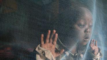 Un enfant derrière une moustiquaire au Kenya