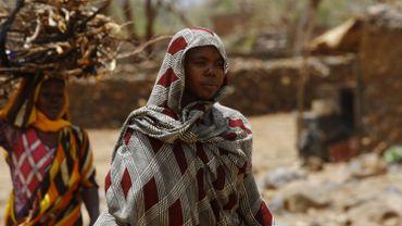 Guerres, régime autoritaire, crise économique… ce que fuient les Soudanais