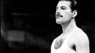 Une application vous permet de comparer votre voix à celle de Freddie Mercury