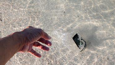 Si vous avez quelques chances de sauver votre appareil tombé dans l'eau douce, vous n'en aurez guère avec l'eau de la mer...