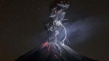 "Sergio Tapiro Valesco, ""The Power of Nature"""