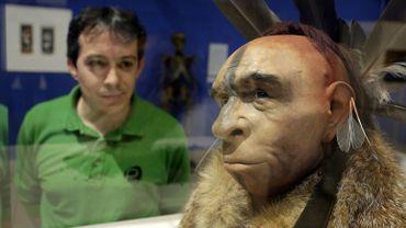 """Des chercheurs ont observé un """"travail"""" sur les dents dans une mâchoire d'un homme de Neandertal."""