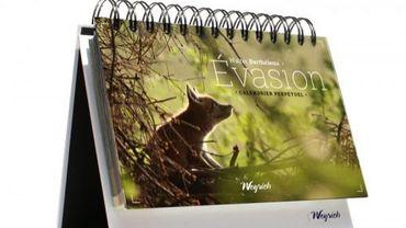 Evasion aux Editions Weyrich