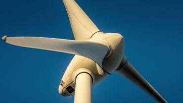 """Flandre: des éoliennes dans dans réserves naturelles, """"une menace aiguë pour la nature"""""""
