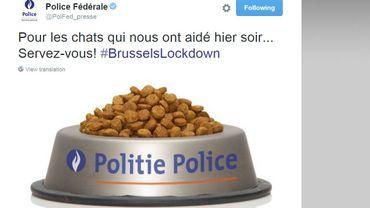 La police fédérale récompense les chats antiterroristes belges