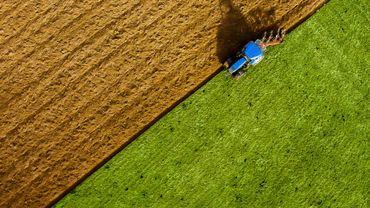 Des scientifiques ont la solution pour diminuer l'impact de l'agriculture moderne sur l'environnement