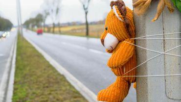 Un décès sur trois dans la circulation dû à un obstacle en bord de route (Touring)