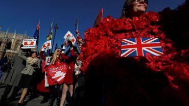 Les pro-Brexit se sont réunis devant le Parlement pour mettre la pression sur Theresa May et les parlementaires.