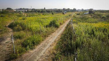 Le terrain sur lequel devrait être construit la méga-prison