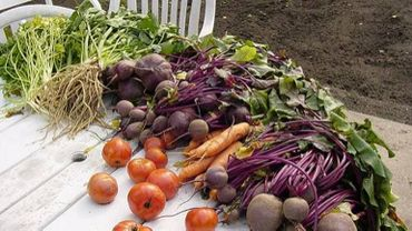 La commune de Braives relève le défi de consommer 100% local