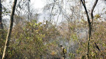 Un pompier volontaire combat un feu de forêt à proximité de Roboré, dans l'est de la Bolivie, le 24 août 2019