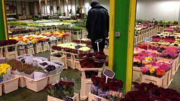 La Halle aux fleurs du marché matinal de Bruxelles