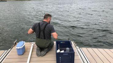 Au lac de Bütgenbach, l'eau est contrôlée toutes les semaines, pendant la saison estivale.