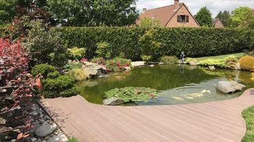L'étang et sa terrasse. La carpe Koï y trouve suffisamment d'espace pour ravir les propriétaires. Il y a une quinzaine de carpes japonaises.