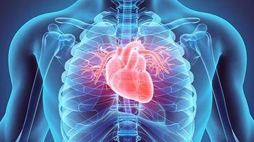 Des chercheurs ont mis au point une nouvelle technique non-invasive permettant de détecter l'inflammation dans les artères et de potentiellement prévenir une maladie cardiovasculaire chez les personnes présentant le plus grand risque.