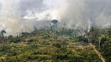 Les forêts tropicales risquent bientôt d'émettre plus de CO2 qu'elles n'en captent, comme cette forêt en feu au Brésil.