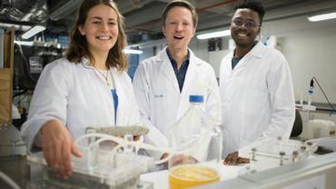 """De gauche à droite, Suzanne Lambert, le professeur Dyllon Randall et Vukheta Mukhari, qui ont développé la première """"bio-brique"""" au monde fabriquée à partir d'urine humaine, dans leur laboratoire du département de génie civil à l'Université du Cap en Afrique du Sud, le 2 novembre 2018"""