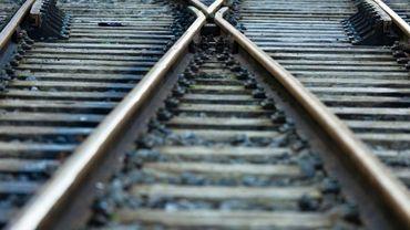 Le train, qui remettait du ballast sur la voie, a déraillé au niveau d'un essieu en franchissant un aiguillage (illustration).