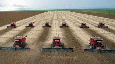 Récolte du soja à Campo Novo do Parecis, dans le Mato Grosso, à l'ouest du Brésil, le 27 mars 2012.