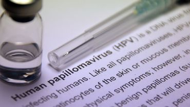 Les papillomavirus humains pourraient se transmettre par le sang.