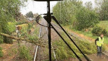Orages: arbres sur les voies et fortes perturbations sur le rail