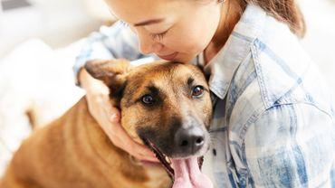 Les chiens veulent sauver leurs propriétaires quand ils ont un problème, selon une étude.