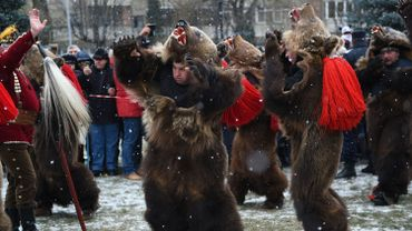 Le festival des ours gronde en Roumanie
