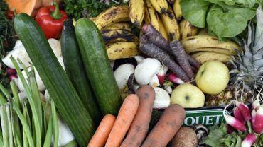 Chaque année, 90 millions de tonnes de nourriture consommables sont gâchées.