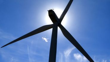 Quasi absentes du paysage énergétique il y a quinze ans, les renouvelables ont déjà montré leur efficacité pour réduire les émissions de CO2.