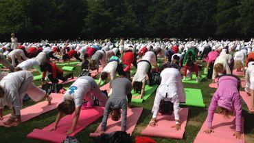 Journée mondiale du yoga au bois de la Cambre, dimanche 21 juin.