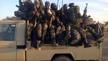Plusieurs attentats et attaques ont eu lieu au Cameroun depuis le début de l'année. Les patrouilles à la frontières nigériane sont parfois dépassées